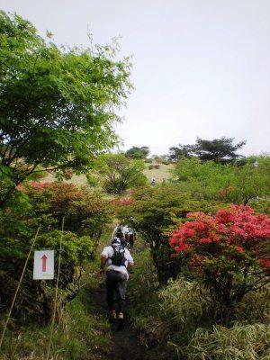 Akagi_030_2