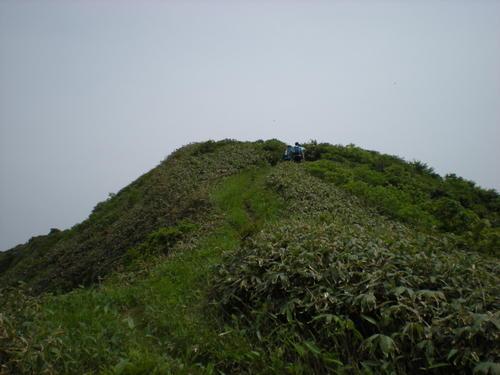 Tuchitaru_262