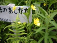 Osj_shiga_168