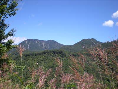 Yunishi_082