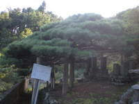 Yunishi_152