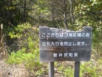 Sekison_042