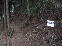 Fuji__160