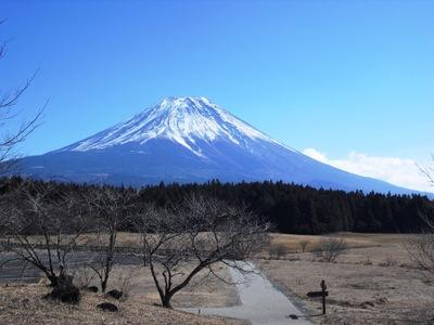 Shizuoka2010__055_2