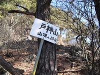 Tokami_kouseki_036