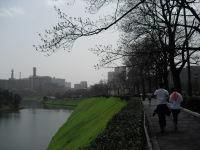 Arakawahonban__064_2