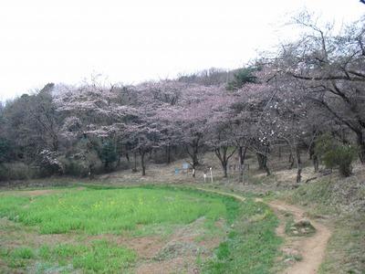 Kanayama_070_2
