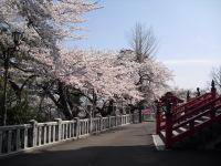 Kannonyama_031