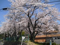 Kannonyama_045