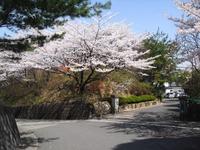 Kannonyama_048