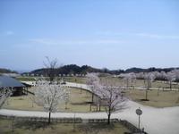 Kannonyama_055