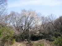 Kannonyama_083