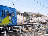 Kannonyama_144_2