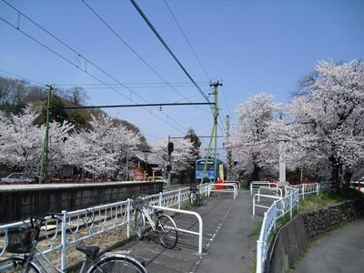 Kannonyama_149
