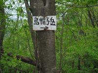 Eboshi_328
