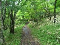 Akagiotogi_063