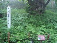 Shiga2010_088_2