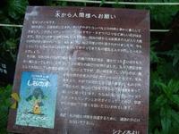 Shiga2010_089