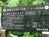 Chichibu201007_073