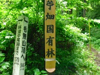 Nozawa2010__089