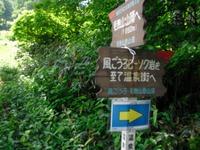 Nozawa2010__136