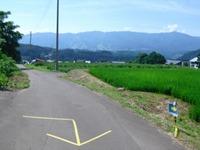 Nozawa2010__234