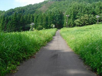 Nozawa2010__309