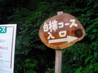 Nozawa2010__353_2