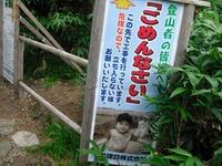 Hakusanarashima_060