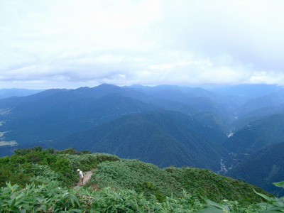 Hakusanarashima_617