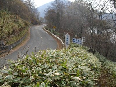 Akagi201011_033