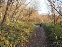 Akagi201011_121