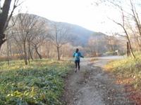 Akagi201011_123