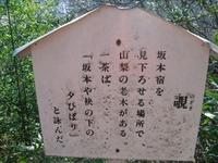 Usui2011_020