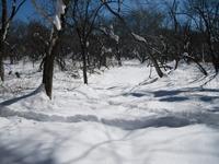 Arafune2011_204