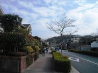 Miura_131
