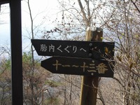 Takeyama_arigasa_076