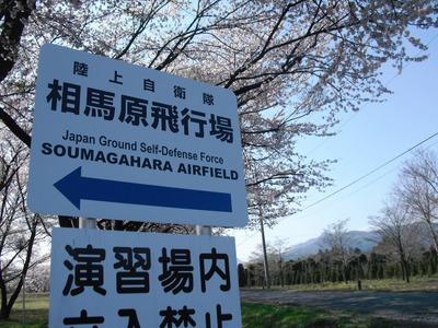 Takeyama_arigasa_227