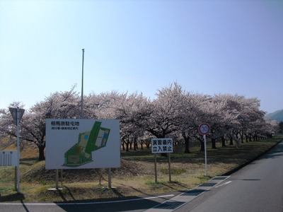Takeyama_arigasa_253