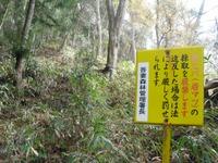 Iwabitu_koseki_036