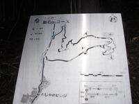 Iwabitu_koseki_228
