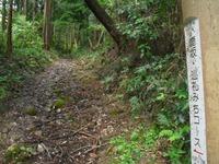 Chichibu2011_049