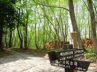 Chichibu2011_065