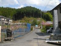 Chichibu2011_199