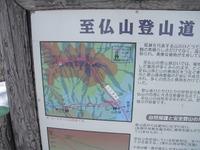 Shibutu2011_277