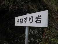 Akagitutuji_115