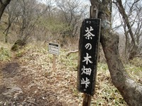 Akagitutuji_129