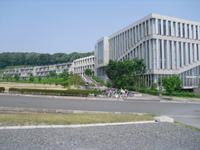 Wasaedamori_010_2