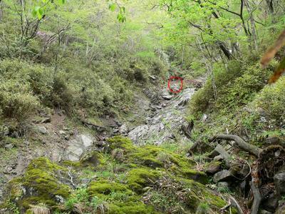 Rihei2011__0812