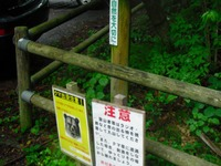 Tanigawa_komochi_013